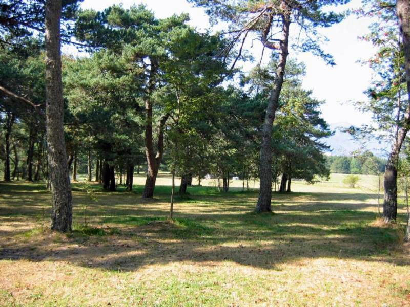 Camping Les Pins, Vassieux-en-Vercors